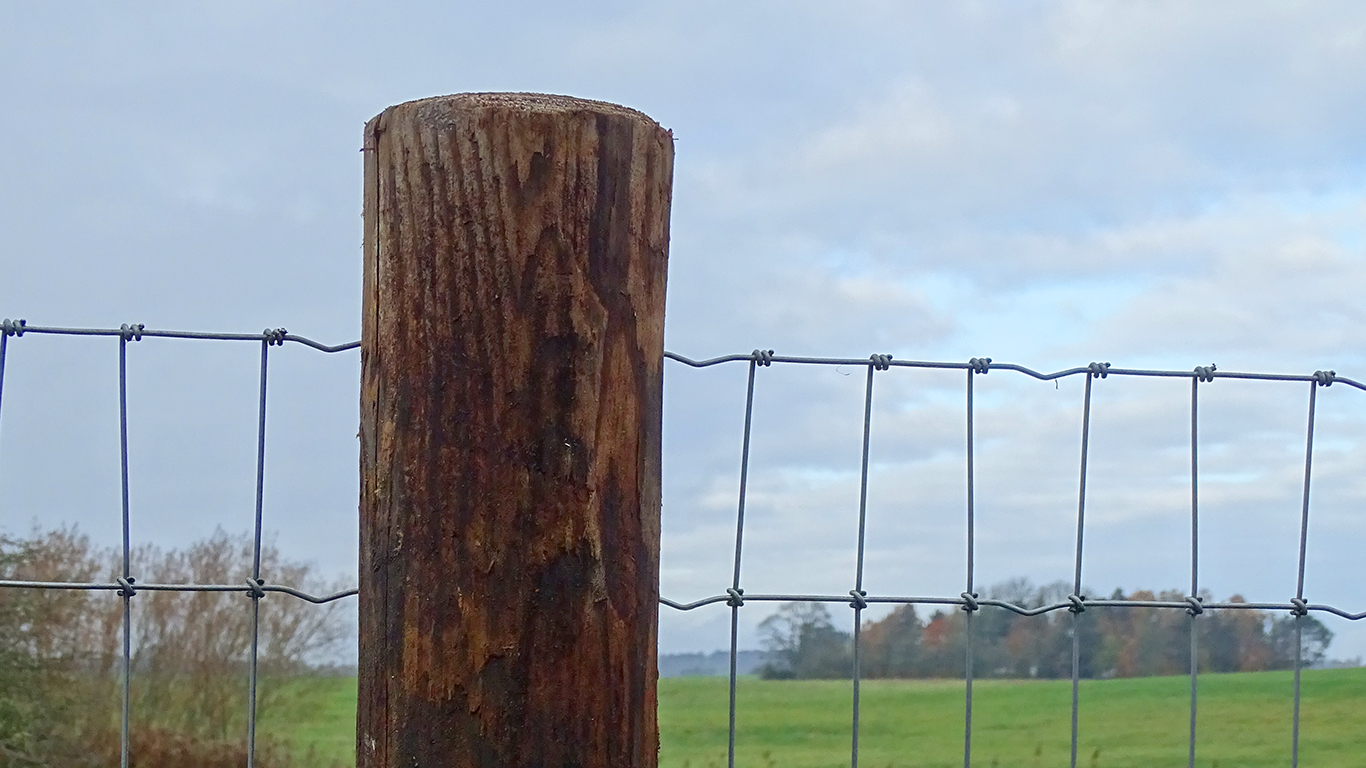 FaunaWood: Innovative natural fence posts